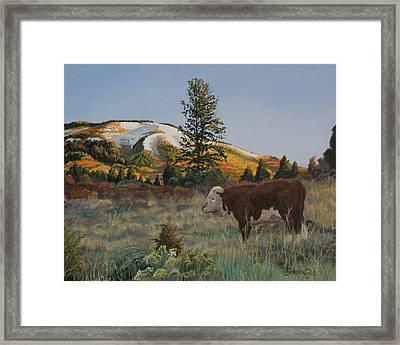 High Range Bull Framed Print