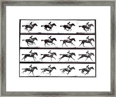 High-speed Sequence Of A Galloping Horse And Rider Framed Print by Eadweard Muybridge Collection/ Kingston Museum/science Photo Library