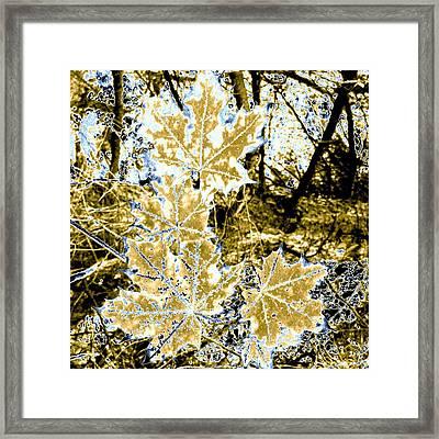High Street Decor 4 Framed Print by Will Borden