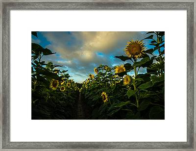 High Style Framed Print