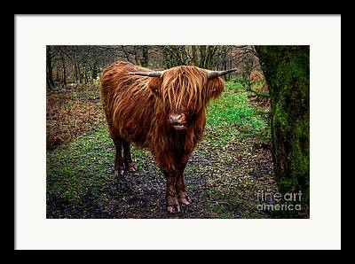 Highlands Digital Art Framed Prints
