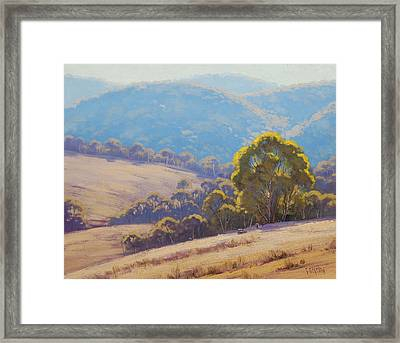 Highland Grazing Lithgow Framed Print