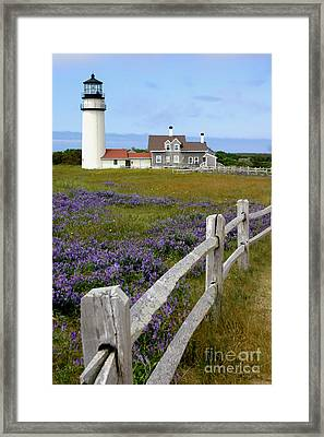 Highland Lighthouse Framed Print
