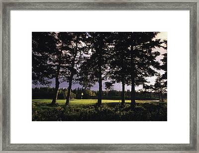 Highland Links Framed Print