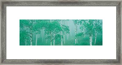 Highlands Yachihokgen Nagano Japan Framed Print by Panoramic Images