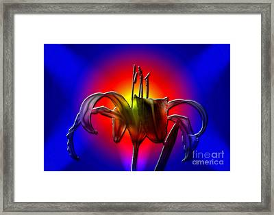 Highlight Of The Day Framed Print by Sue Stefanowicz