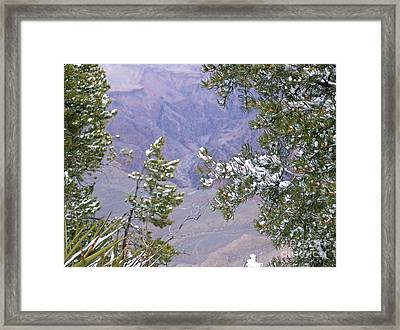 Framed Print featuring the photograph Highlighting Snow by Roberta Byram