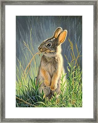 Highly Selective Framed Print by Paul Krapf