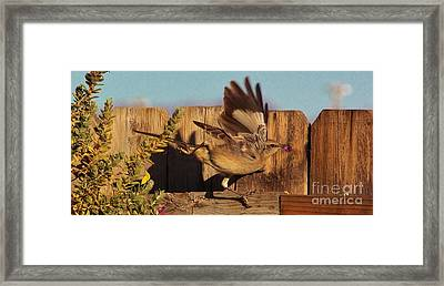 Hightail It Out Of There Framed Print