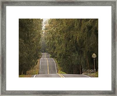 Highway 250 Framed Print by Inge Riis McDonald
