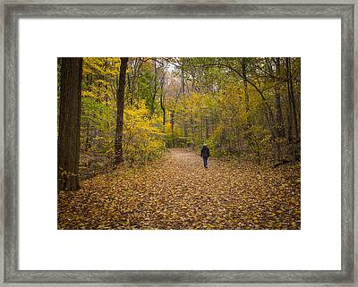 Hiker IIi  Framed Print by Tim Fitzwater