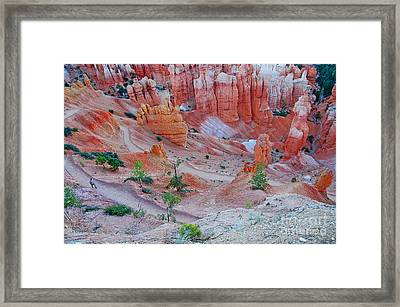 Framed Print featuring the photograph Hiking Bryce by Nick  Boren