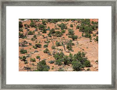 Hiking Canyonlands National Park Framed Print by Jim West