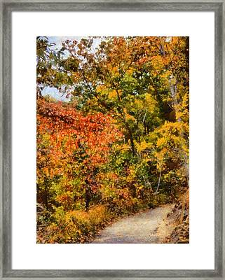 Hiking In Autumn Framed Print by Dan Sproul
