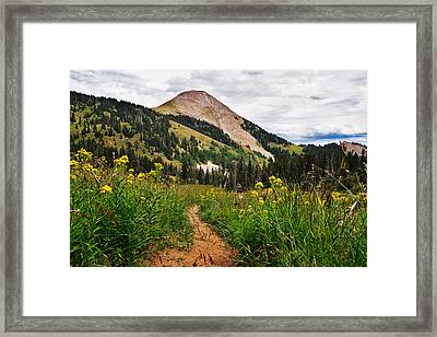 Hiking In La Sal Framed Print by Adam Romanowicz