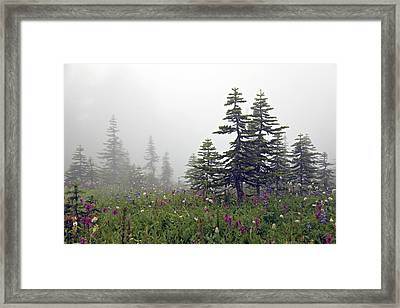 Hiking In The Clouds Framed Print by Kjirsten Collier