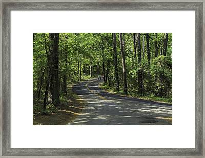 Hiking In The Woods At Caddo Lake Framed Print by John Hesley