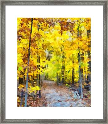 Hiking The Autumn Forest Framed Print by Dan Sproul