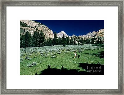 Hiking The Pioneer Mountains Framed Print by William H. Mullins