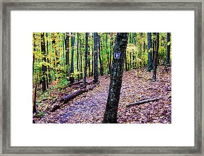 Hiking Trail During Autumn Season Framed Print by Alex Grichenko