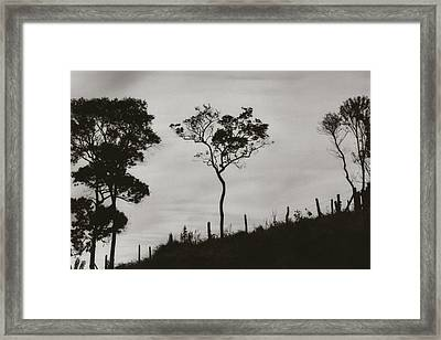 Framed Print featuring the photograph Hill by Amarildo Correa