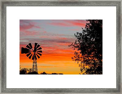 Hill Country Colors Framed Print by David  Norman