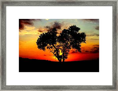 Framed Print featuring the photograph Hill Country Darkness by David  Norman