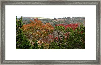 Framed Print featuring the photograph Hill Country Splash by David  Norman