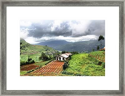 Hill Country Sri Lanka Framed Print by Sanjeewa Marasinghe