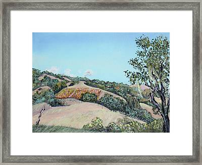 Hill Vineyard And Friendly Clouds Framed Print by Asha Carolyn Young