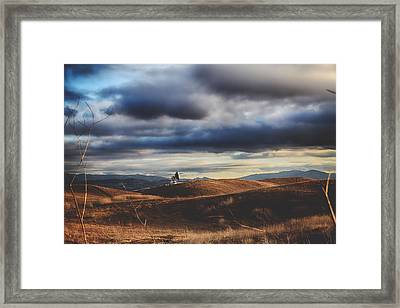 Hills Of Gold Framed Print by Laurie Search