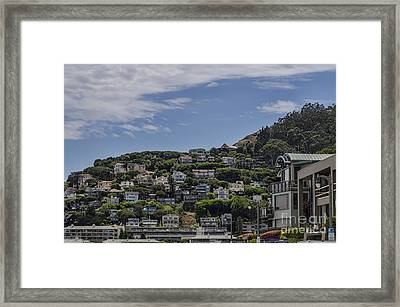 Hills Of Salsalito Framed Print