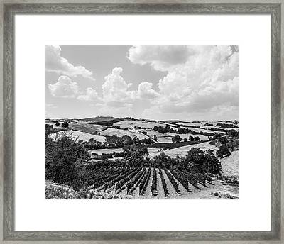 Hills Of Tuscany Framed Print by Clint Brewer