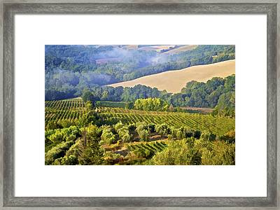 Hills Of Tuscany Framed Print by David Letts