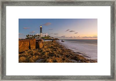 Hillsboro Inlet Lighthouse Framed Print by Claudia Domenig