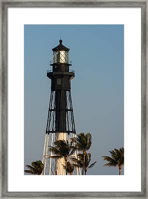 Hillsboro Inlet Lighthouse In The Evening Framed Print