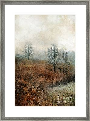 Hillside Framed Print by HD Connelly
