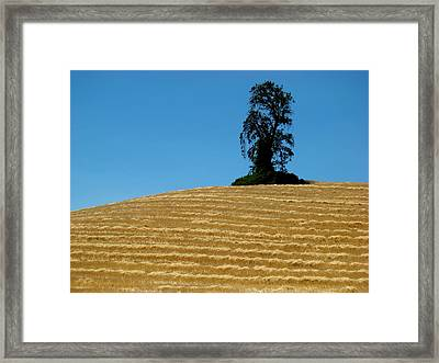 Framed Print featuring the photograph Hillside Protector by Paul Foutz