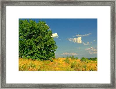 Hillside Retreat Framed Print