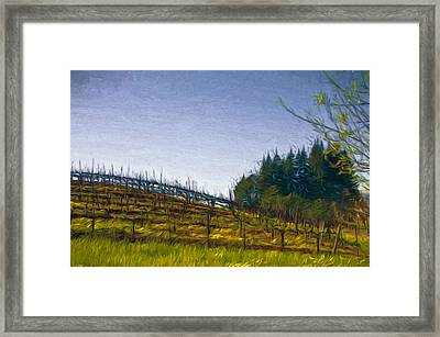 Hillside Vines Framed Print