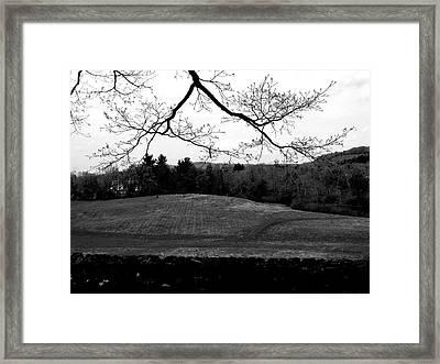 Hillstead Framed Print by Hannah Nagel