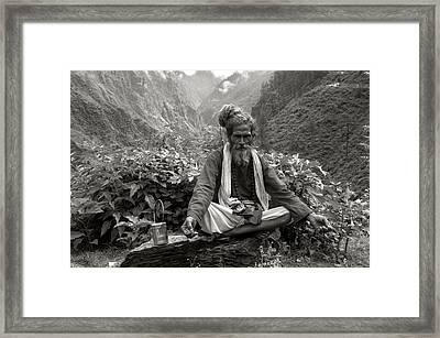 Himalayan Framed Print by CoSurvivor