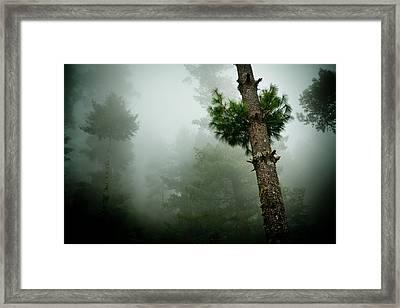 Himalyas Mist Framed Print by Raimond Klavins