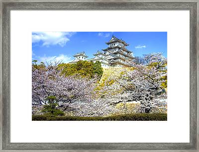 Himeji Castle In Spring Time Framed Print