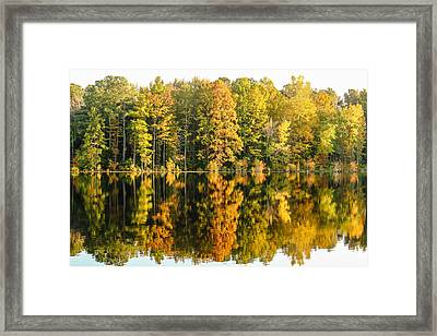 Hinson Fall Framed Print