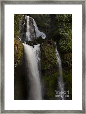 Hint Of Light Framed Print by Keith Kapple