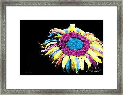 Hippie Sunflower Rainbow Painterly Framed Print by Andee Design