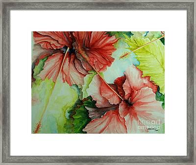 Hiroko's Hibiscus Framed Print