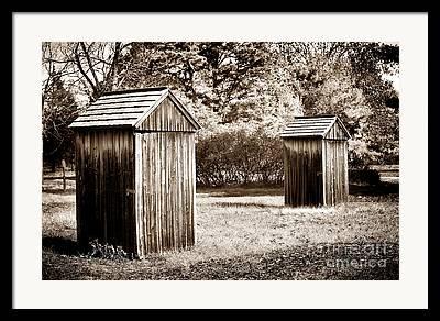 Pine Barrens Photographs Framed Prints