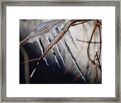His Biting Touch Framed Print